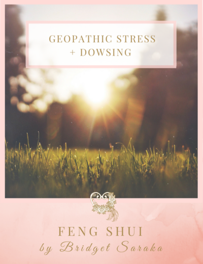 Geopathic Stress + Dowsing