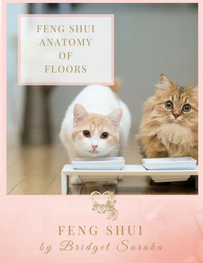 The Feng Shui Anatomy of Floors