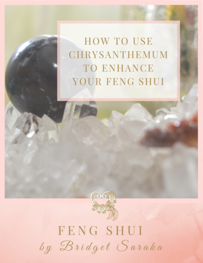 How to use Chrysanthemum to Enhance Your Feng Shui