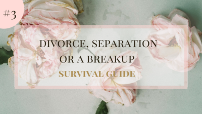 How to Survive a Divorce #3