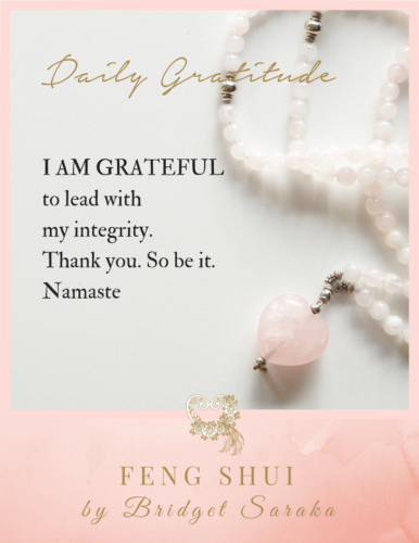 Daily Gratitude Volume 2 by Bridget Saraka (23)