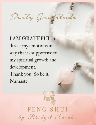 Daily Gratitude Volume 2 by Bridget Saraka (26)
