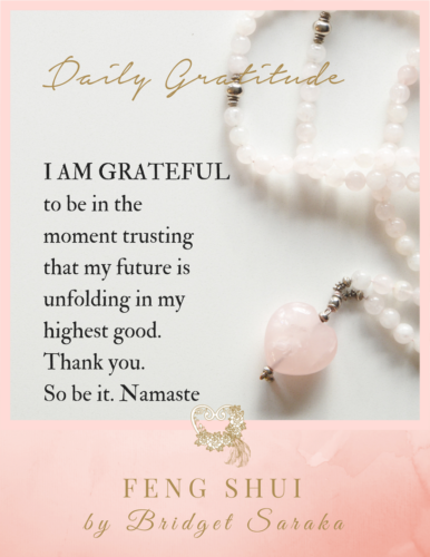 Daily Gratitude Volume 2 by Bridget Saraka (7)