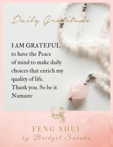 Daily Gratitude Volume 3 Feng Shui by Bridget (2)