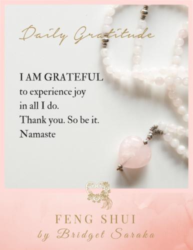 Daily Gratitude Volume 3 Feng Shui by Bridget (27)