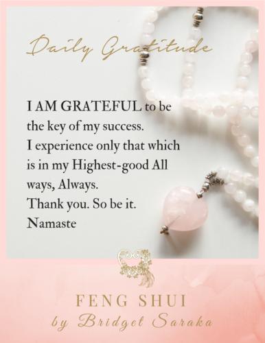 Daily Gratitude Volume 3 Feng Shui by Bridget (6)