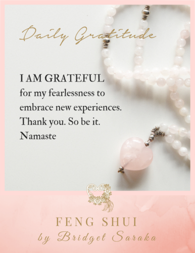 Daily Gratitude Volume #7 Feng Shui by Bridget 1 (20)